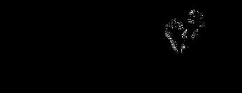 Logo transparants zwart.png