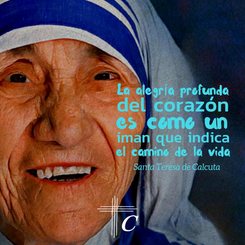Frases De Santa Teresa De Calcutapng