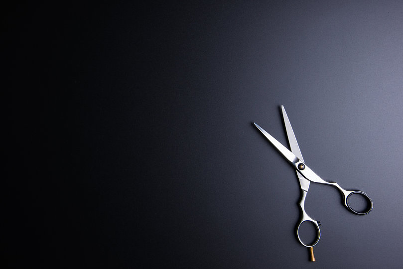 Stylish Professional Barber Scissors, Ha