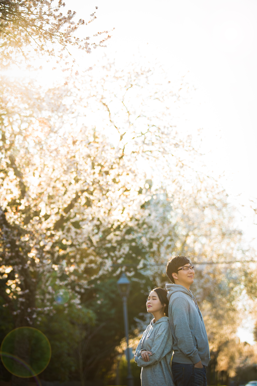 Wedding cherry blossom photo