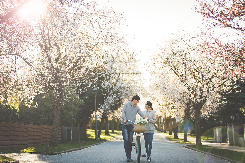 wedding photographer in vancouver and cherry blossom
