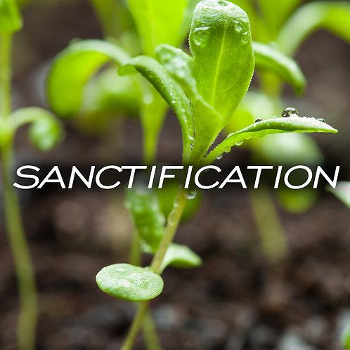 Sanctification CD/DVD