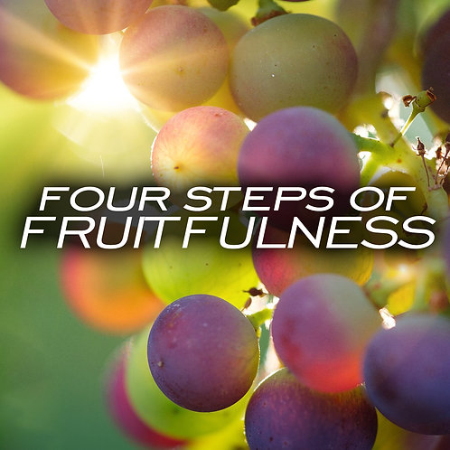 Four Steps of Fruitfulness CD