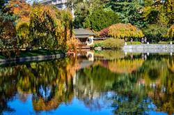 Botanic_Garden_2.jpg
