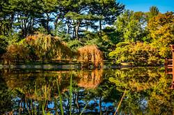 Botanic_Garden_3.jpg