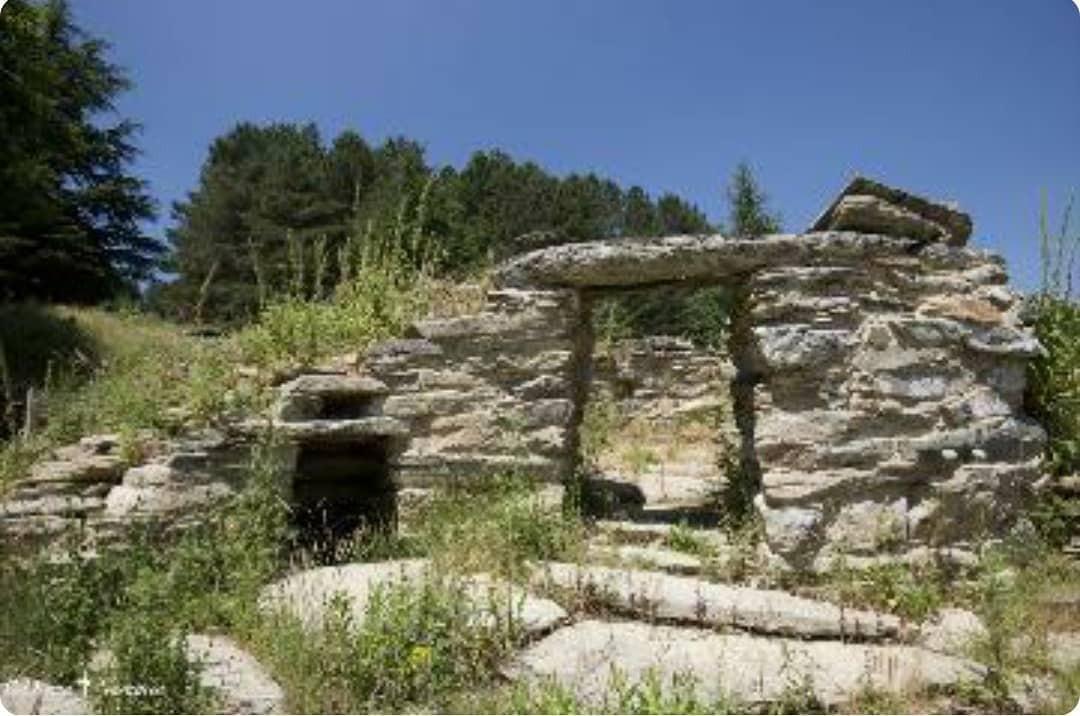 copyright www.donnanuragica.com