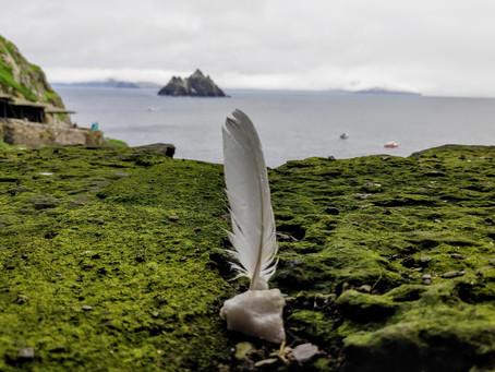 Dall' Isola di Skelly Michael..