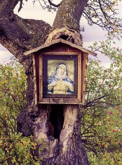 Sante Maria