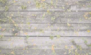 Flowers on Wood_edited.jpg
