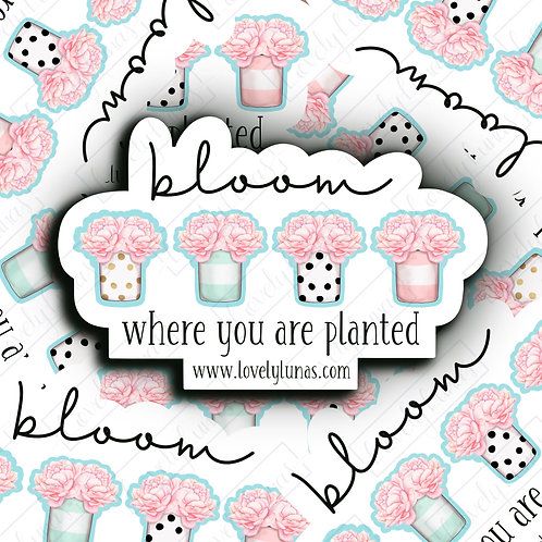 Bloom where you are planted- Sticker