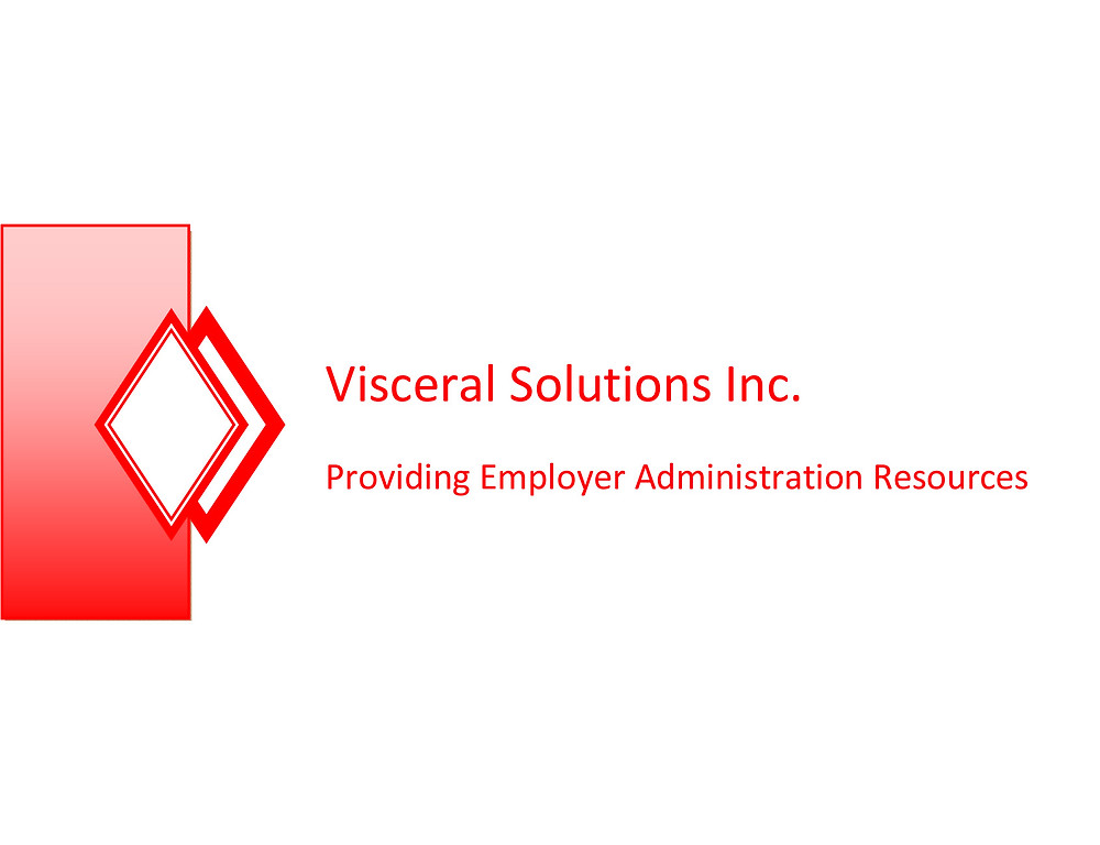 Visceral Solutions logo website link