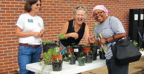 UT Agricultural Extension Service Is Here to Help You Grow