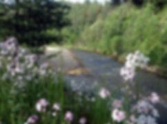 Pinehurst_creek_2018.jpg