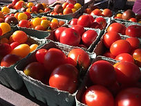 Tomatoes at market.jpg