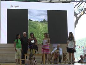 APAC e Jenny Montanelli per PEPPINO premiazione con don Luciano Denevi, Parroco di San Roco e Ruta di Camogli