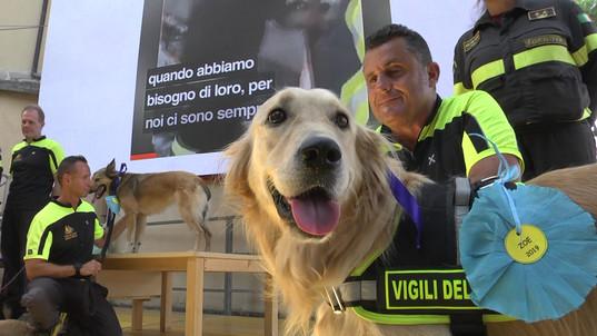 Nucleo Cinofilo Regionale Liguria VVF
