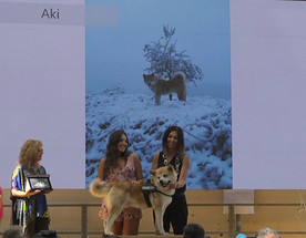 AKI premiazione con Elisabetta Abamo, Assessore Comune di Camogli