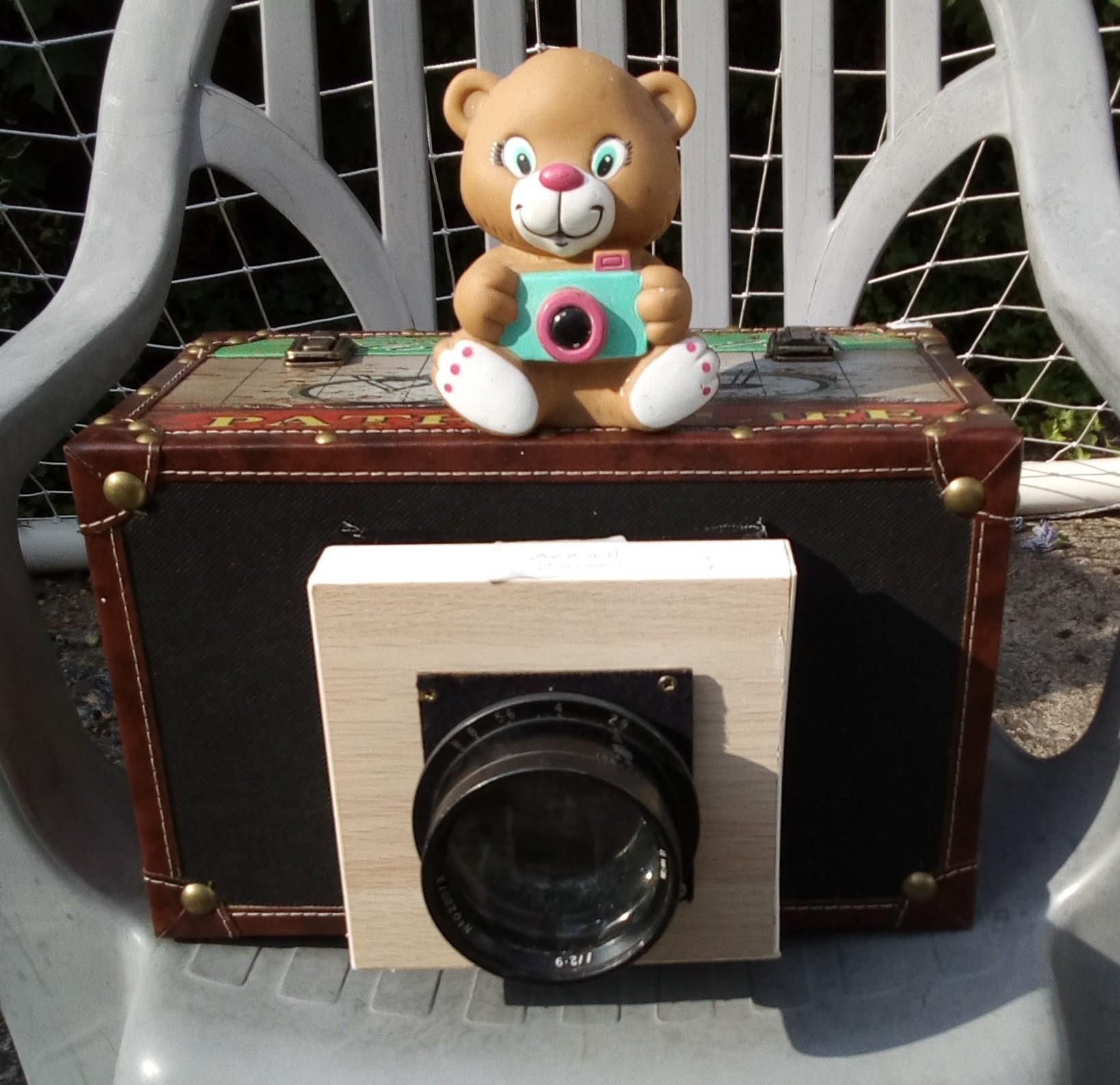Bear and camera
