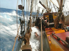 on board.jpg