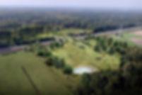 Visualisatie natuurbrug bird -bronvermel