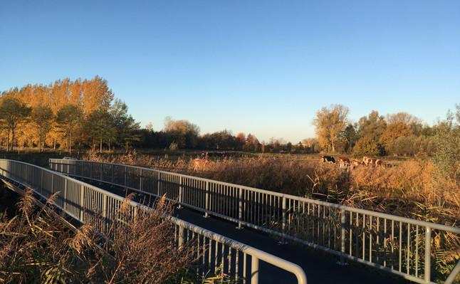 Wandel-fietspad Bobbenagelseweg.JPG