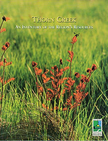 CTAPThornCreekCover507_edited.jpg