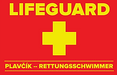 Lifeguard1.png
