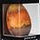 Thumbnail: Venus Tamaño GRANDE. Peso 600grs