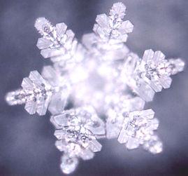 Water-Crystal-Masaru-Emoto.jpg