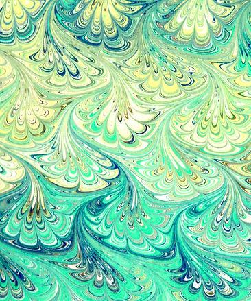 img095 D2TAIL_edited.jpg