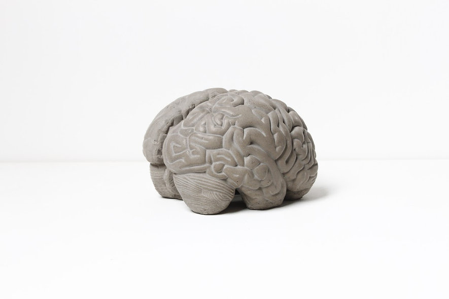Concrete Brain Book Stoper