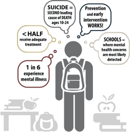 Standing On the Ledge: VSN Mental Health from a Student Perspective
