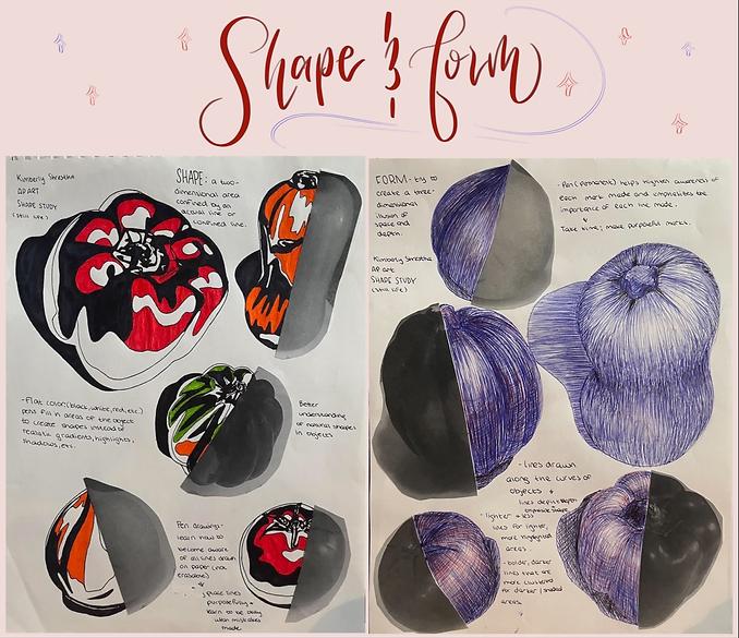 Shape and Form Study