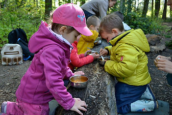 forest playgrup, forest nursery, free play outdoors