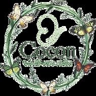 COCON_logo_finaal_edited.png