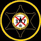 HCSO Avation Logo (300x300).png
