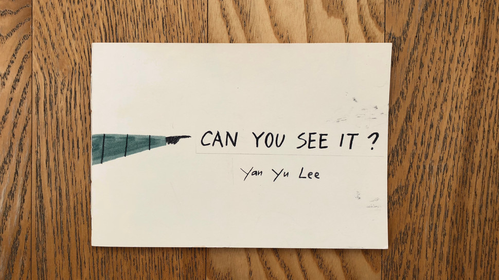 Can You See It ?