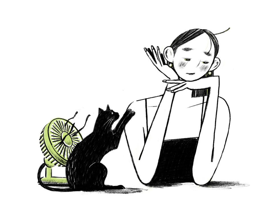 Fan and Cat