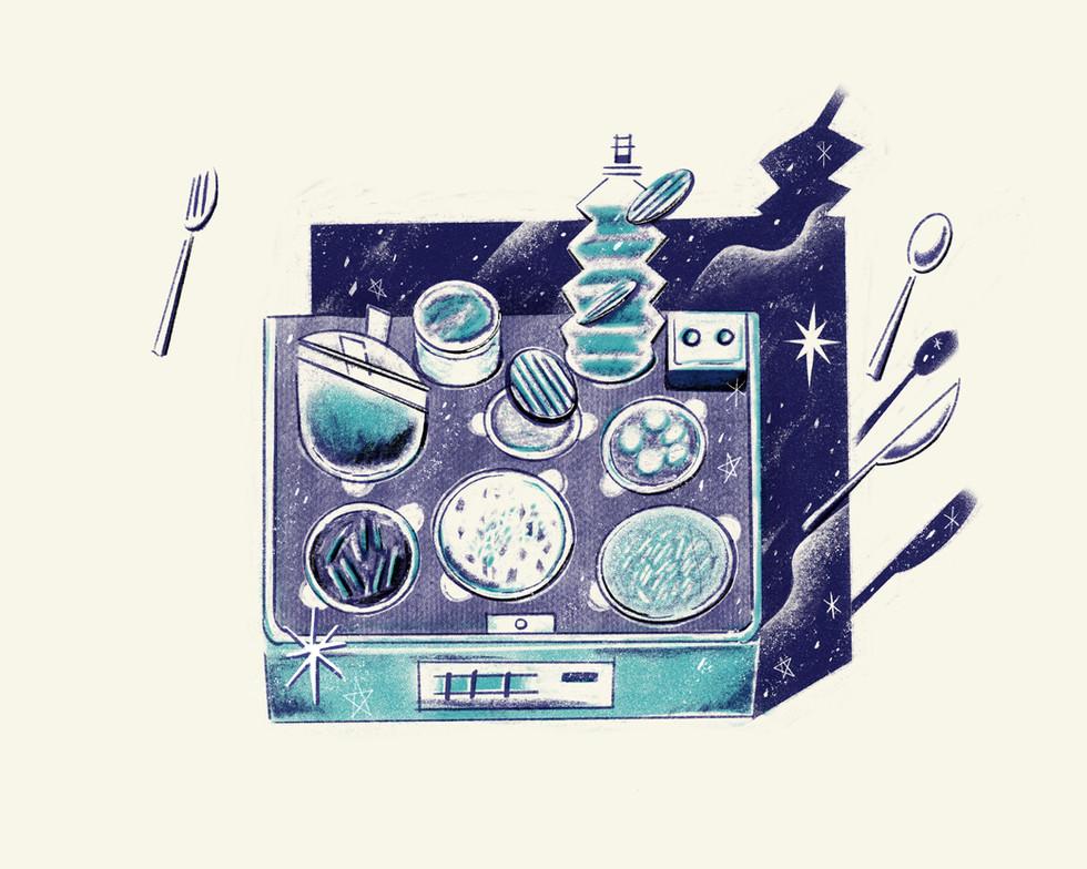 The Skylab Food Tray