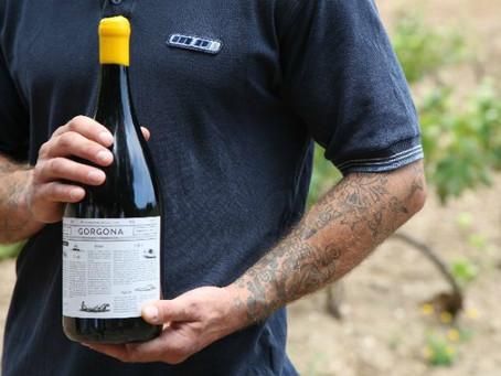 Вышел второй релиз вина Фрескобальди сделанный заключенными