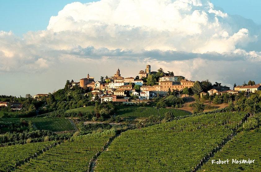 виноградники Барбареско Италия
