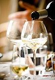 бокалы для красных вин, для белых вин, бокалы для розовых вин