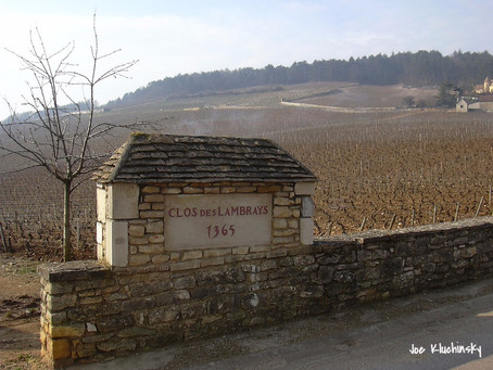 Цены на лучшие виноградники Бургундии по-прежнему растут