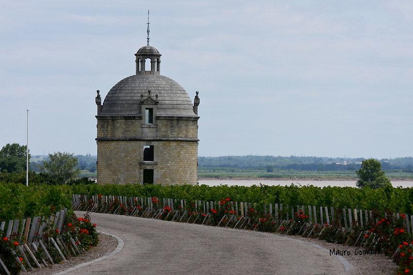 Замок Латур Бордо