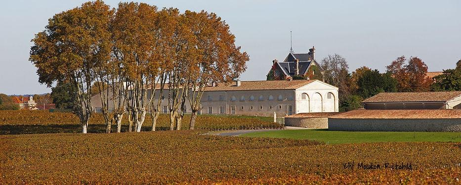 На фото: погребChateau Mouton- Rothschild