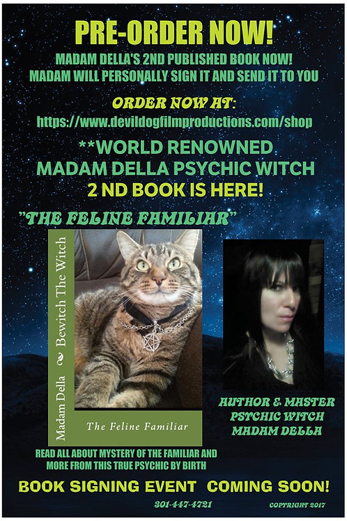 BewitchThe Witch-The Feline Familiar- 2nd book