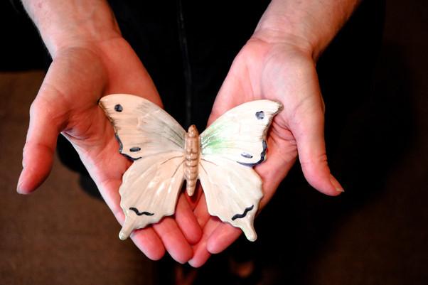 Metamorphosis Skin Spa Butterfly.JPG