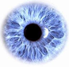 Blue eye 2.jpg