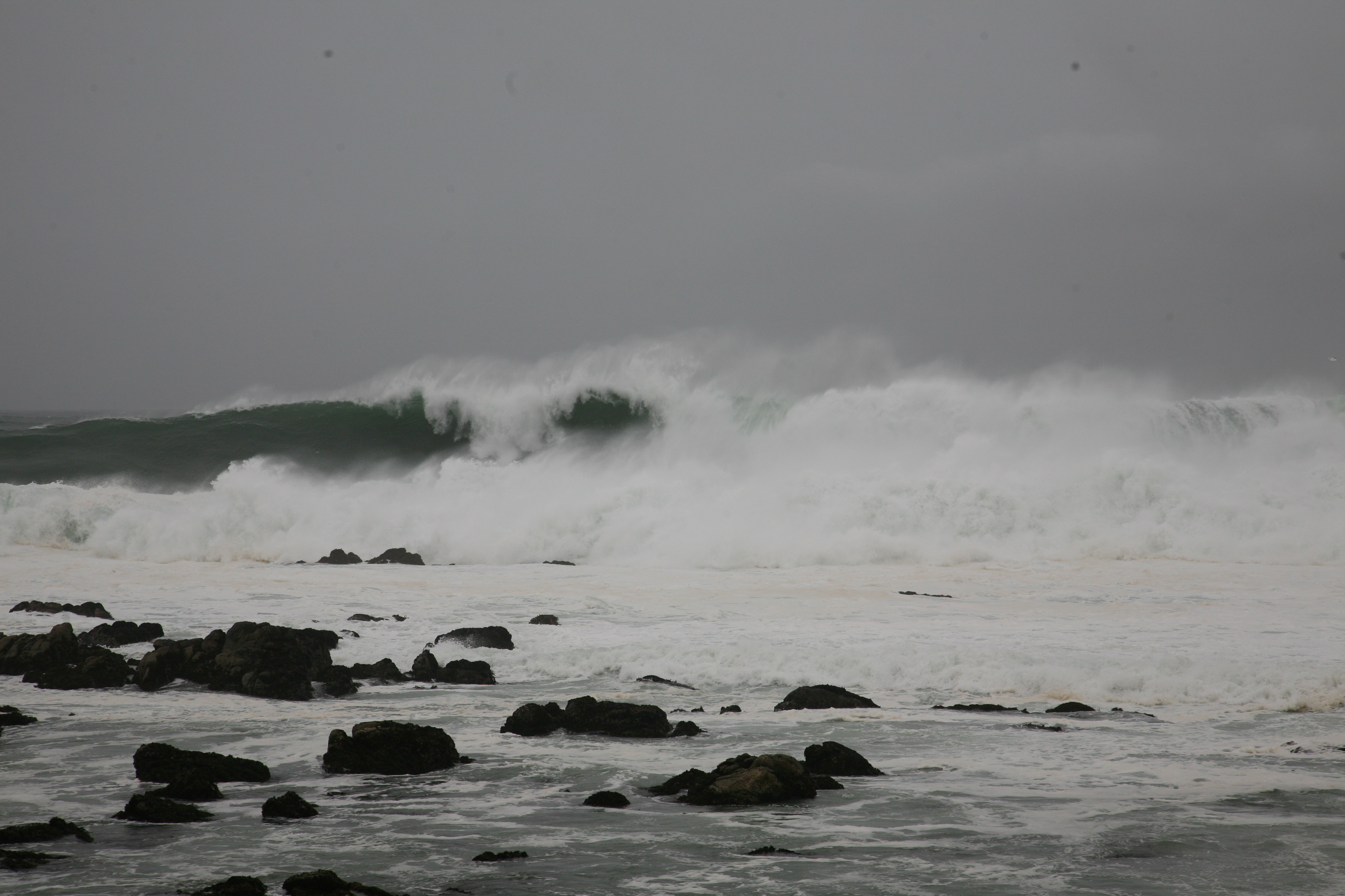 Pacific Grove, CA surf.JPG