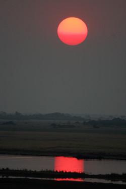 Sunset on Chobe River, Botswana.jpg